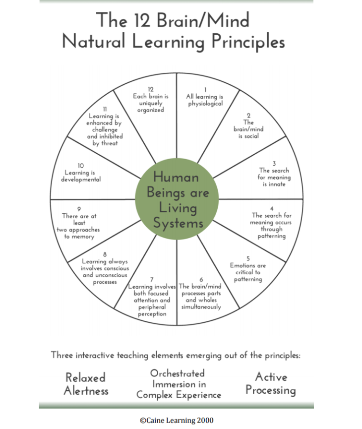 12 Brain Mind Natural Learning Principles