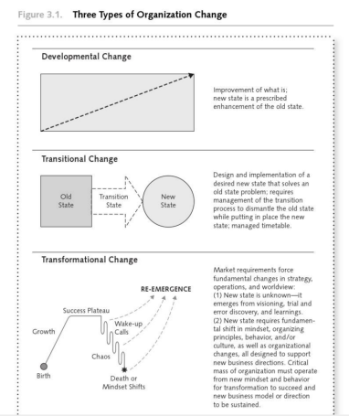 Three Types of Organizational Change - Anderson & Anderson - 2010